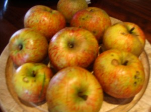 Bowl containing Beauty of Bath apples