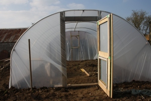 View of polytunnel with open door