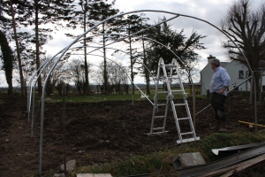 Frame for polytunnel is up!