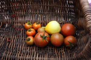 Tomatoes and cucumber