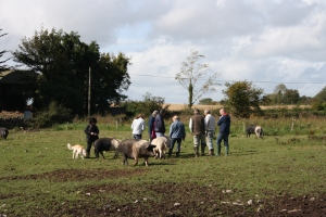 Participants on pig rearing course