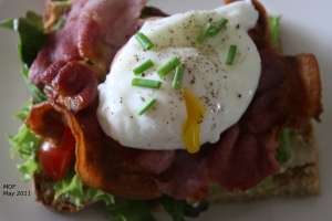 Poached egg on bacon