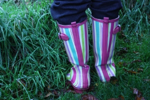 Stripey wellies