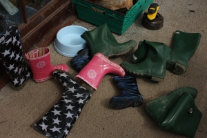 a selection of wellingtons on ground.