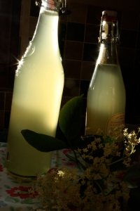 2 bottles of home-made Elderflower Cordial