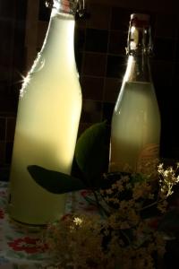 2 bottles of home-made Elderflower Cordial