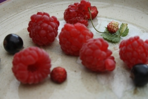 Raspberries, blackcurrents and smallest strawberries