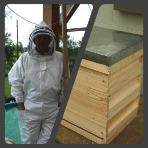 Bee Keeper suit and beehive