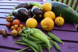 September harvest - peas, beans, tomatoes, yellow cucumbers, aubergines, courgettes