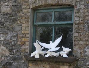 Doves on window sill