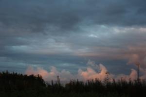 Sunset at Redwood2