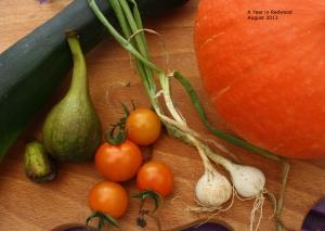 Courgette (zuccini), figs, tomatoes, spring onions, squash