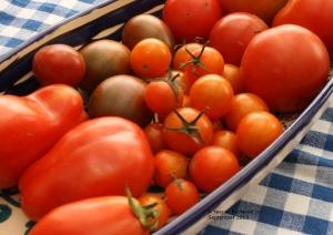 dish full of tomatoes