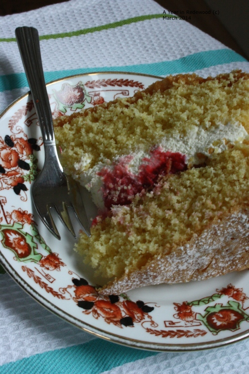 Sponge cake with whipped cream and raspberries