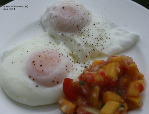 Poached eggs with Mango Salsa