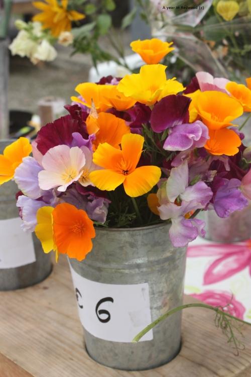 The Flowerfield display
