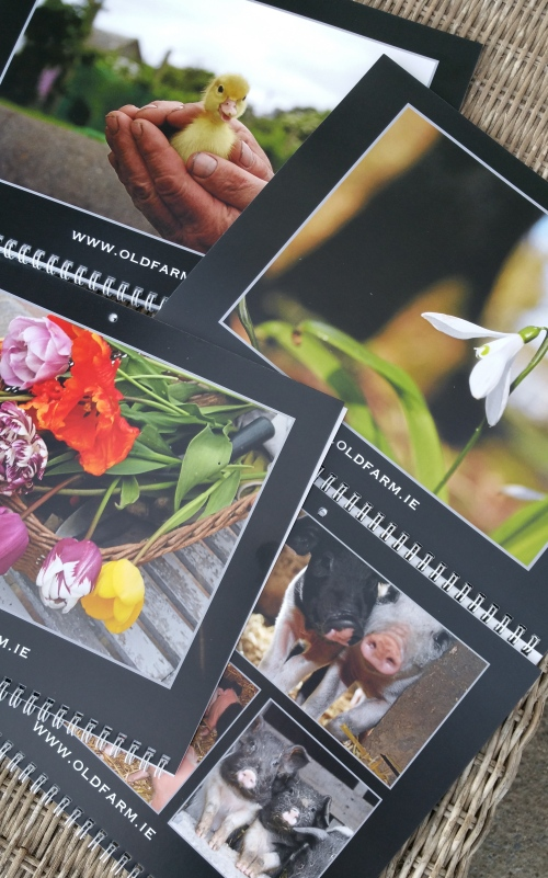 2015 Oldfarm Calendar