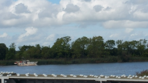 The view from Portumna Bridge