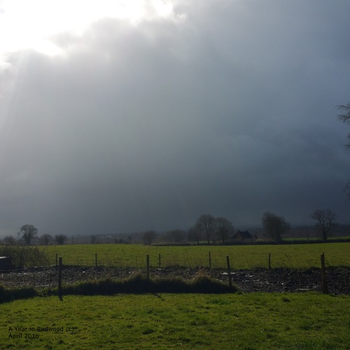 Rain is a coming
