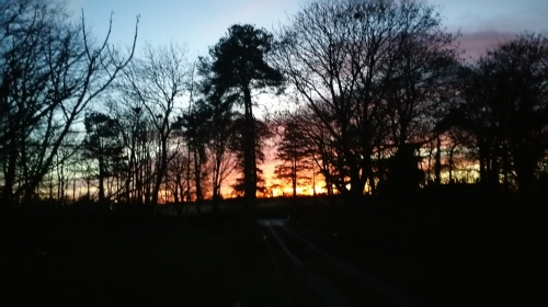 Winter sunset at Oldfarm