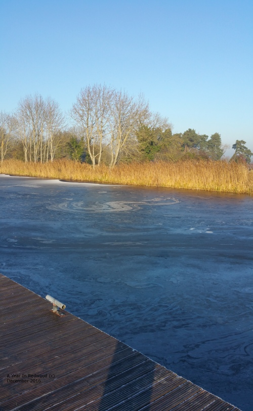 ice Patterns on River Shannon